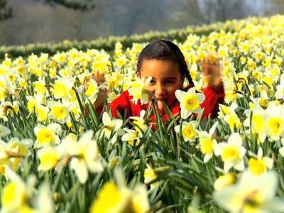 Crianças e primavera