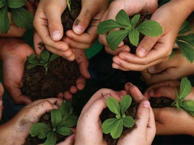 A construção de outro modelo de finanças depende de uma estratégia socioambiental