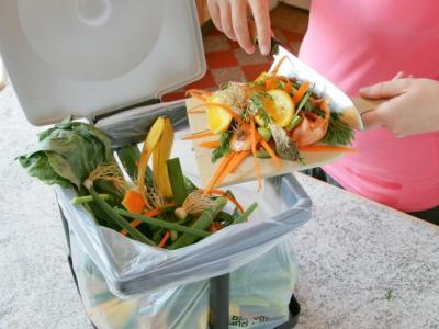 Bioplástico compostável é alternativa sustentável para produtos descartáveis