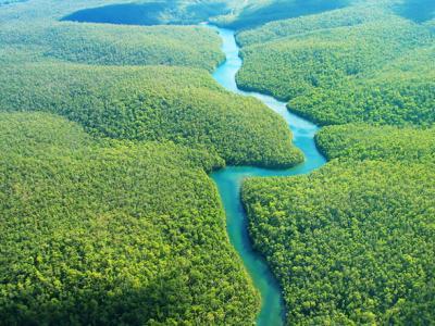 Mãos pesadas sobre a Amazônia