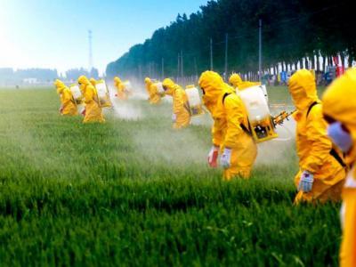 Como a Monsanto sabotou pesquisas sobre o câncer