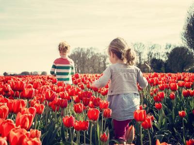 É primavera! Louvor à essa magistral obra de Deus