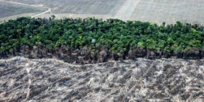 Tapajós e Xingu, caminhos para devastar a Amazônia