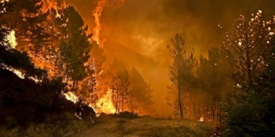 Portugal: as causas ocultas do mega-incêndio